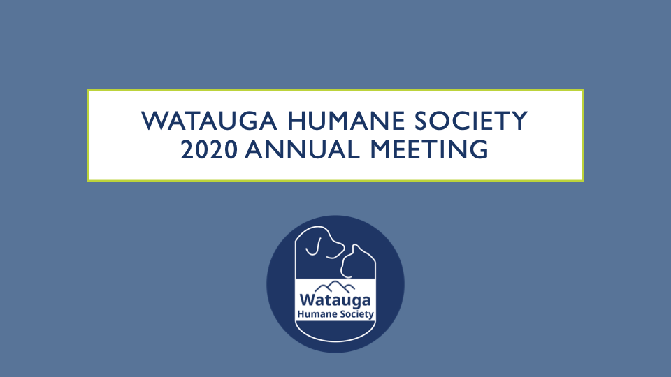 Updates & Changes - 2020 Annual Meeting